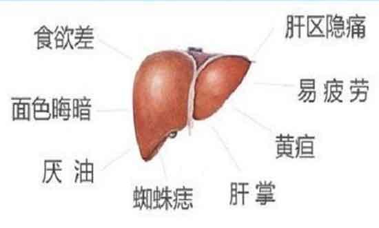 肝病教授叶诚正在河南省医药院附属医院会诊进行中,看肝病就找上海肝病专家